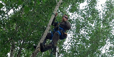 About Us | Missoula Valley Tree Service - Missoula, MT